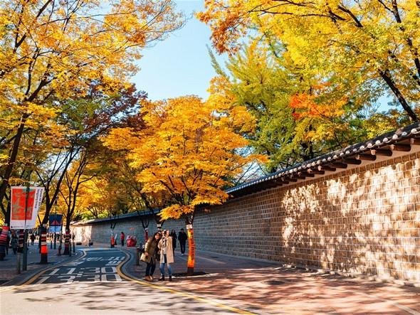 Du Lịch Seoul Mùa Nào Đẹp Nhất - ảnh 6