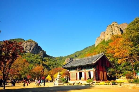 Ngắm kiến trúc độc lạ của các ngôi chùa nổi tiếng ở Hàn Quốc - ảnh 2