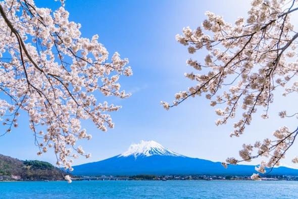 Trải nghiệm tour du lịch Nhật Bản tại hồ Kawaguchi vào mùa đông