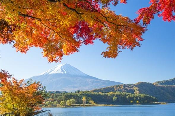 Khám phá núi Phú Sĩ – biểu tượng Nhật Bản - ảnh 4
