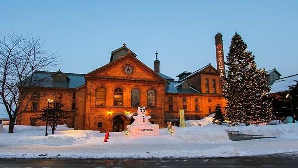 Ngỡ ngàng với vẻ đẹp Hokkaido bốn mùa -  ảnh 6