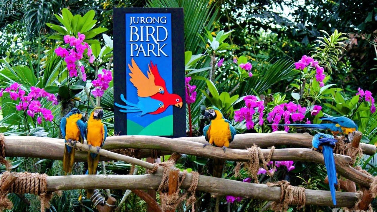Tour du lịch liên tuyến Singapore Malaysia 6 ngày 5 đêm - Vườn chim Jurong