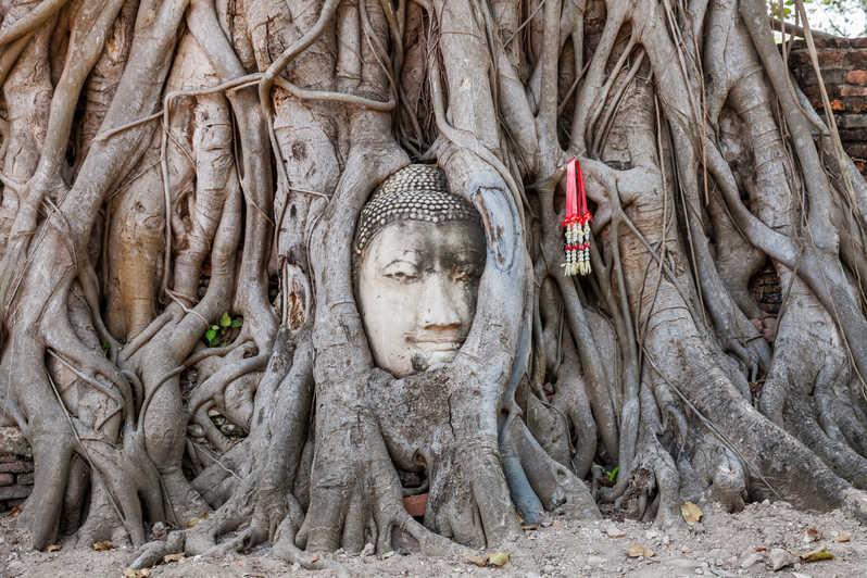 Tìm hiểu và khám phá cố đô Ayutthaya bình yên của Thái Lan - ảnh 5