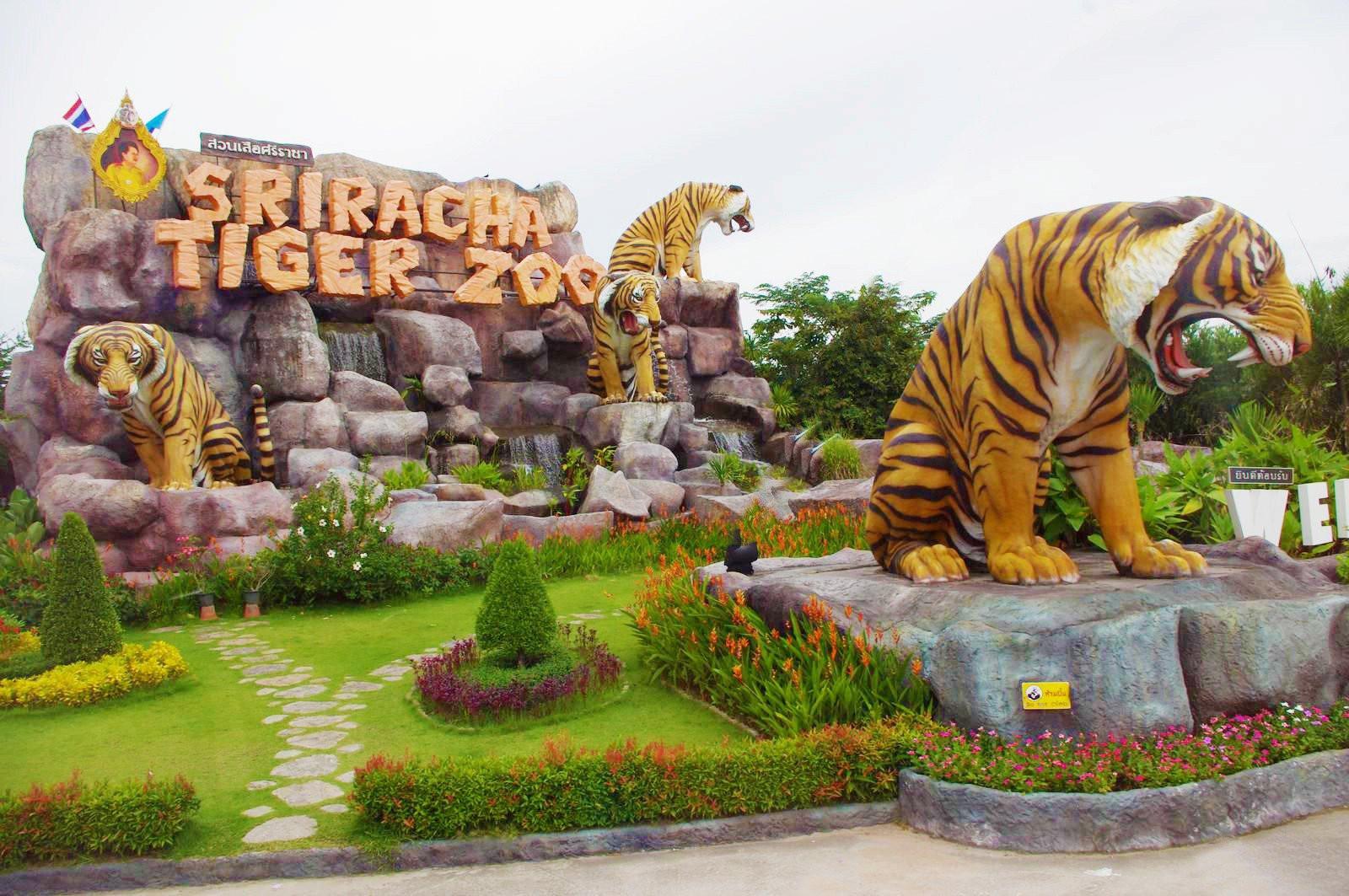 Du lịch Thái Lan – hành trình khám phá công viên Sriracha Tiger Zoo - ảnh 1