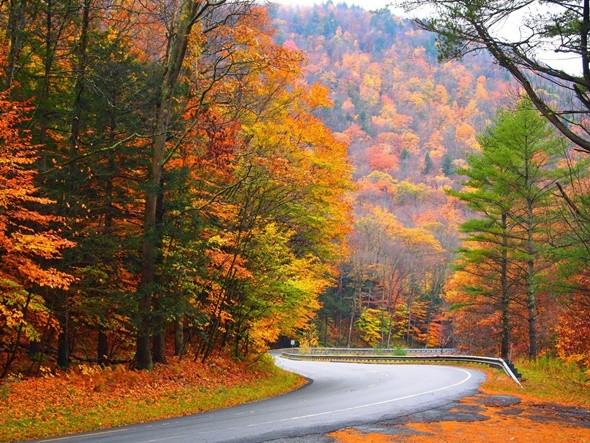 Ngẩn ngơ trước những địa điểm ngắm mùa thu tuyệt vời tại Mỹ - Berkshires