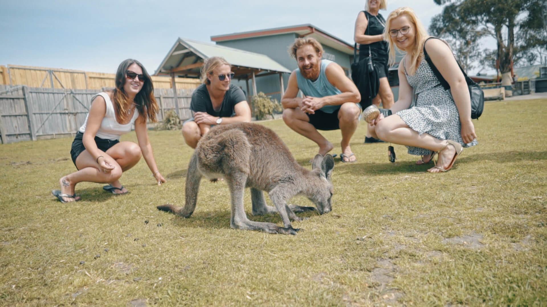 Khám phá nước Úc thăm thân nhân - ảnh 3