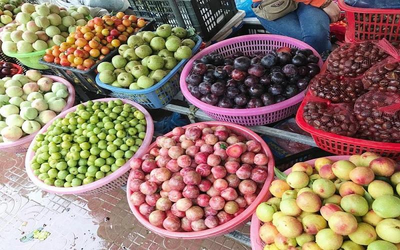 """những món ăn đặc sản Sapa ngon """"quên lối về"""" - hoa quả theo mùa"""