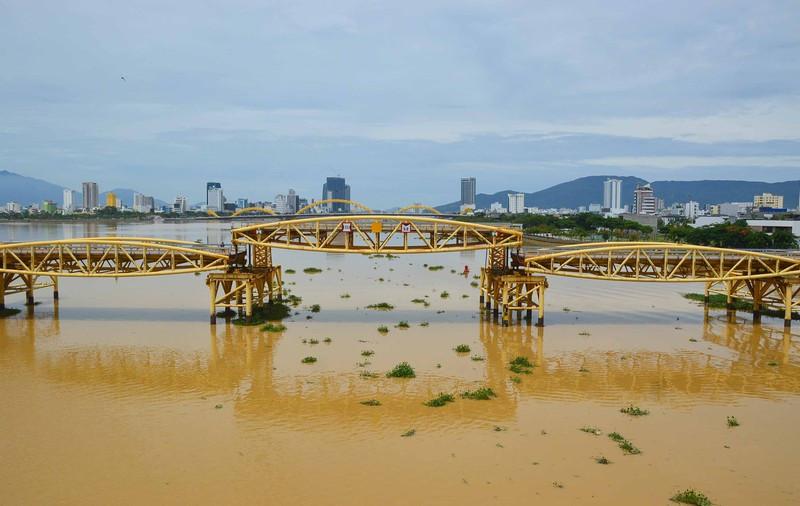 Vẻ đẹp huyền ảo của Đà Nẵng qua những cây cầu - ảnh 5