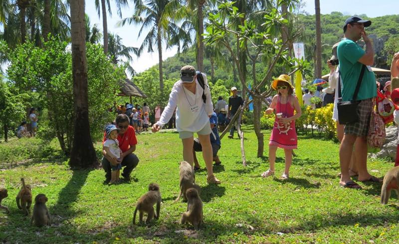 Hòn Lao Đảo Khỉ – Vương quốc của những chú khỉ tinh nghịch giữa biển khơi - ảnh 2