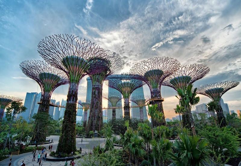 Garden By The Bay - kỳ quan nhân tạo nổi tiếng Thế Giới