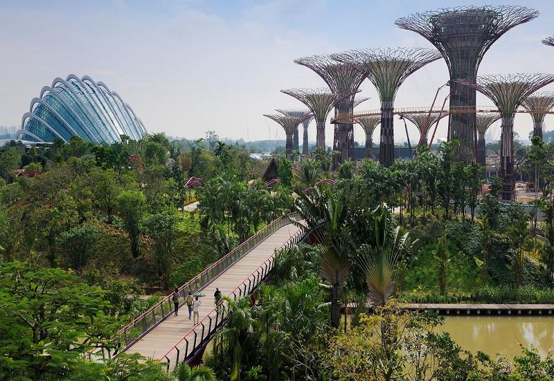 Bay Central Garden