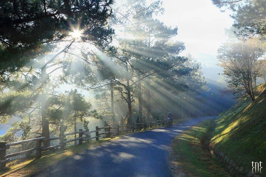 Hãy một lần dành thời gian chiêm ngưỡng cảnh tuyệt đẹp đèo Prenn Đà Lạt - ảnh 2
