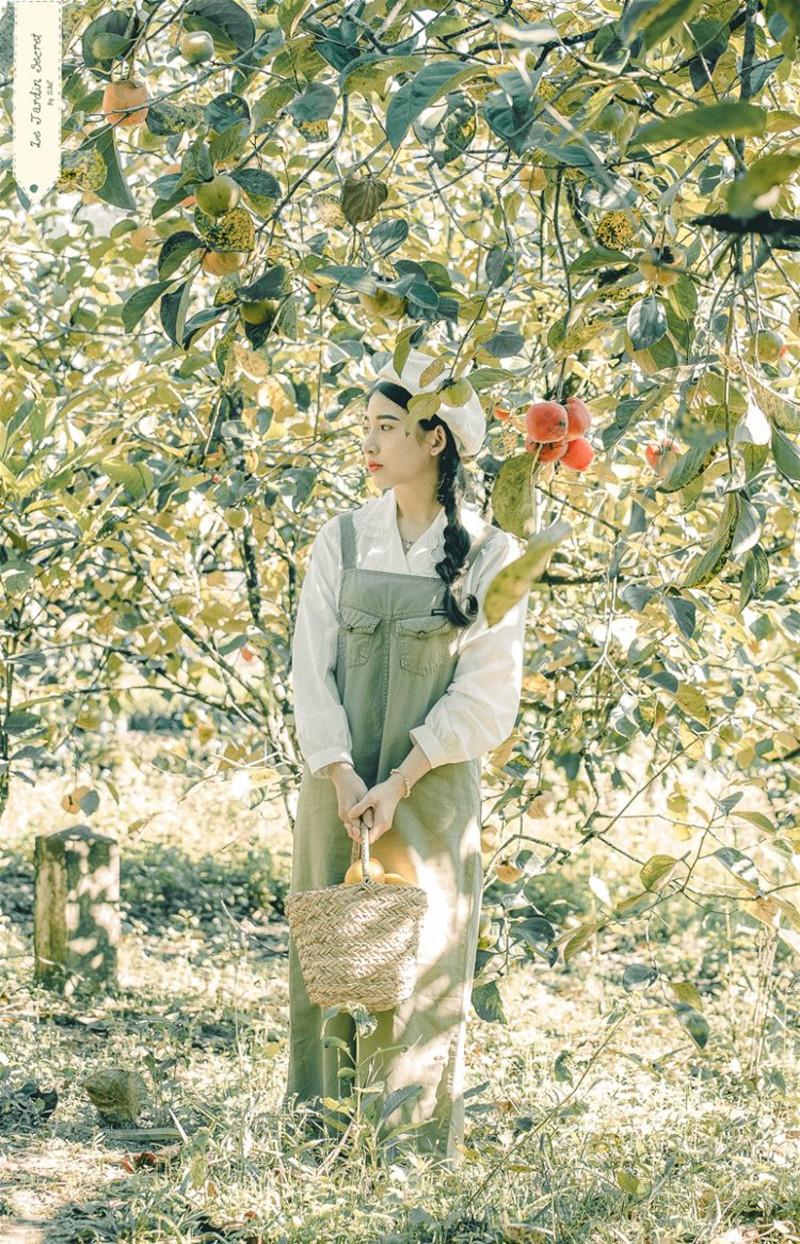 Hồng Đà Lạt - check in vườn hồng