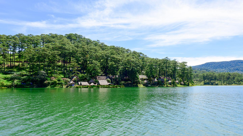 Khám phá mùa thu Nhật Bản ngay tại rừng lá phong Đà Lạt - ảnh 2