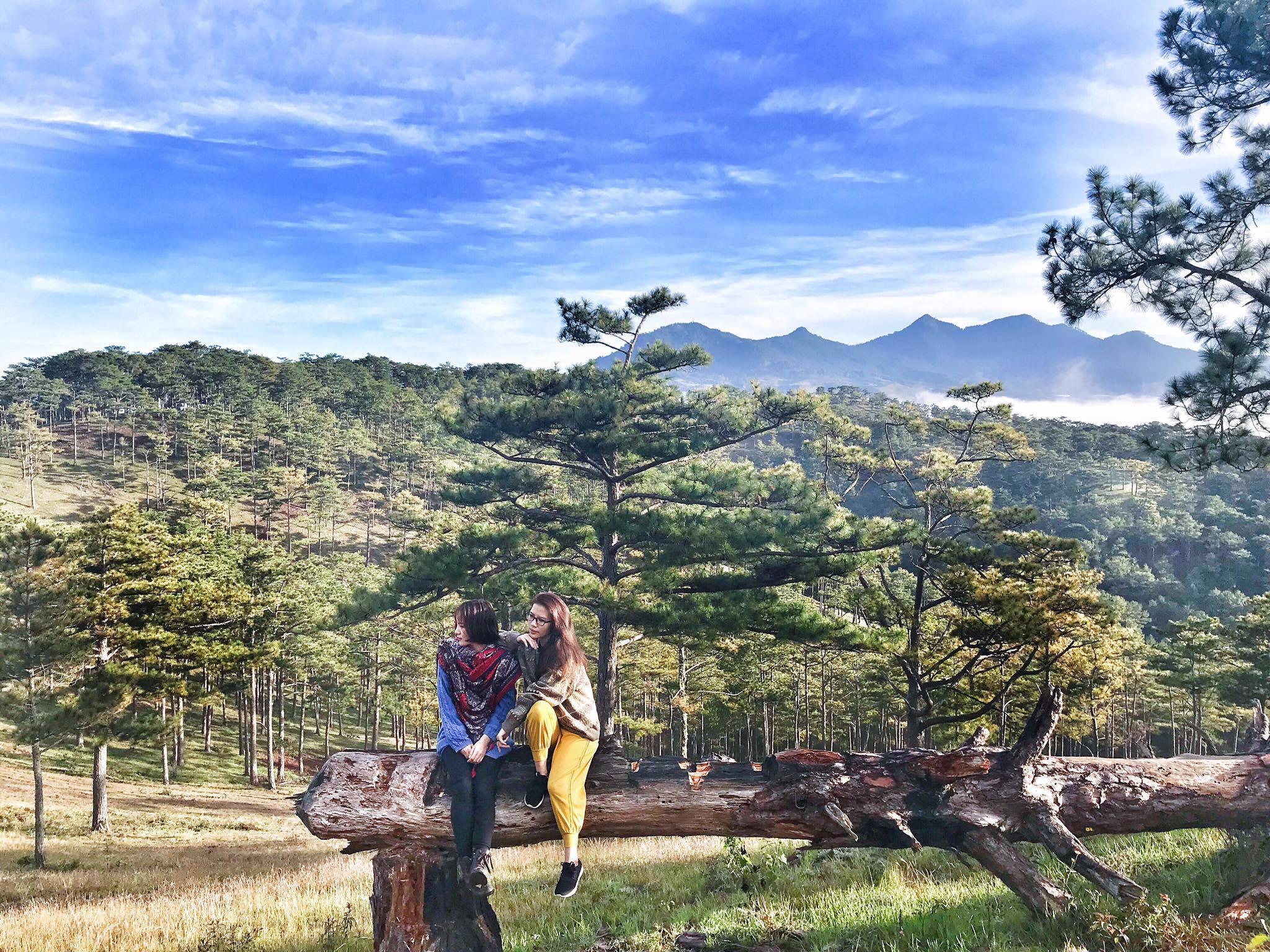 Thung Lũng Vàng – Nơi check in không góc chết ở thành phố Đà Lạt - ảnh 2