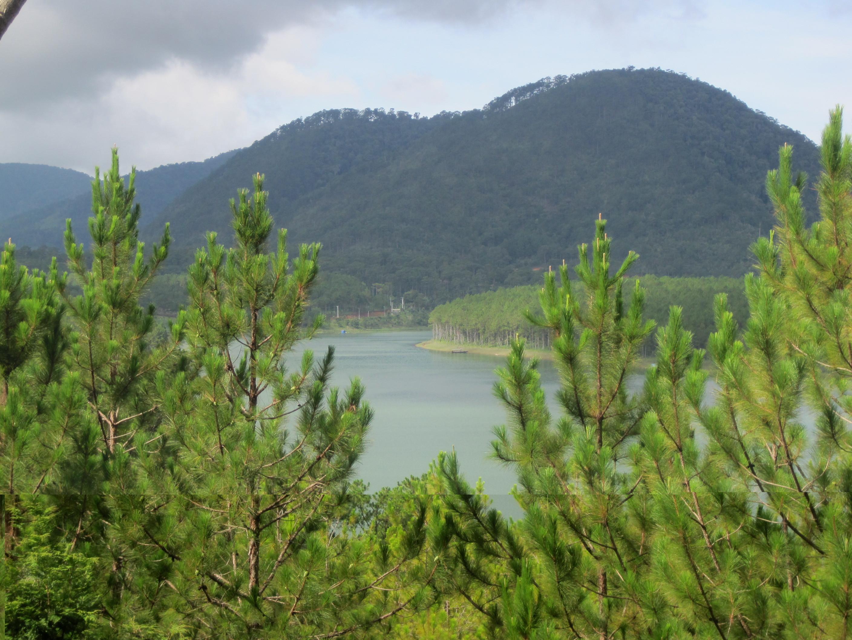 Thung Lũng Vàng – Nơi check in không góc chết ở thành phố Đà Lạt - ảnh 7