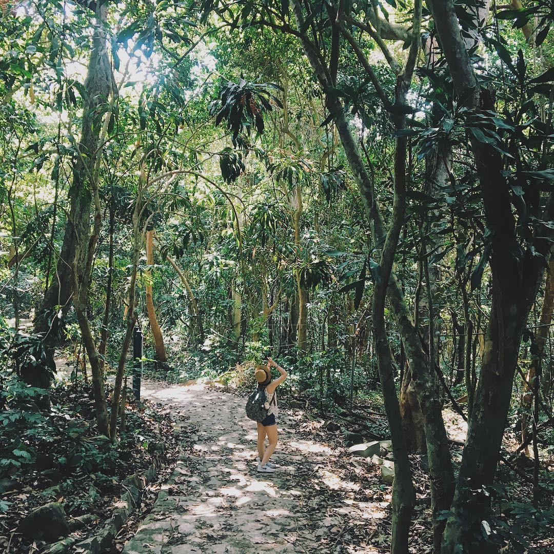 Du lịch Côn Đảo - ảnh 4