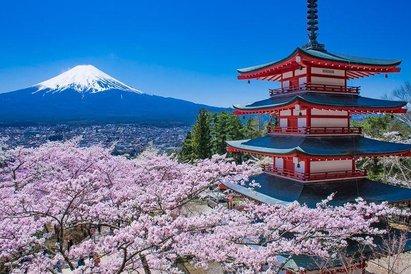 Du lịch Nhật Bản - ảnh 3