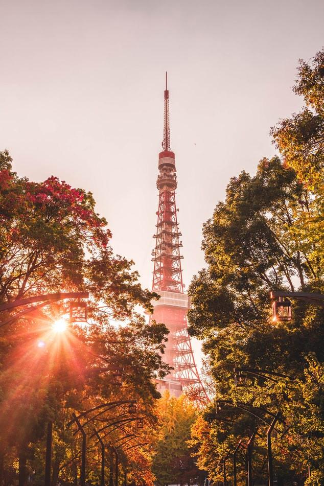 Ghim ngay 4 tọa độ ngắm mùa thu đẹp nhất Châu Á - ảnh 6