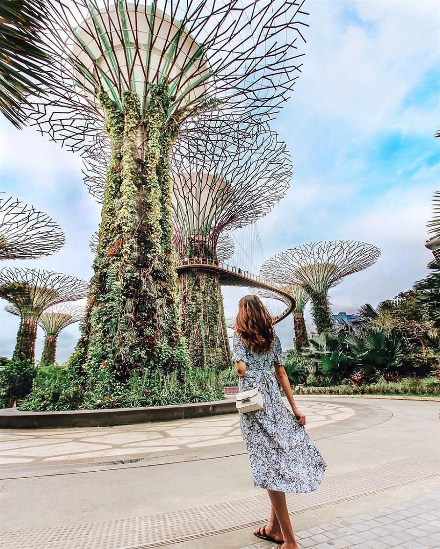 Ghim ngay 4 tọa độ ngắm mùa thu đẹp nhất Châu Á - ảnh 11