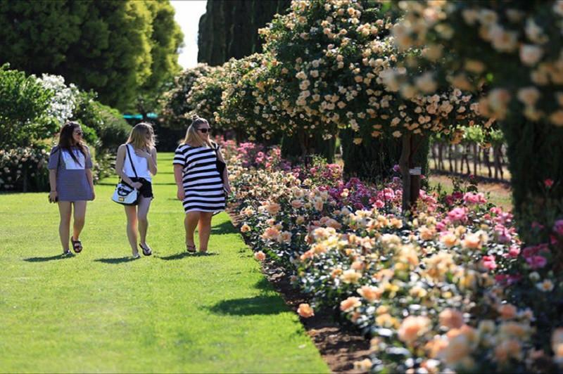 Lễ hội hoa, cây cảnh Bathurst Spring Spectacular