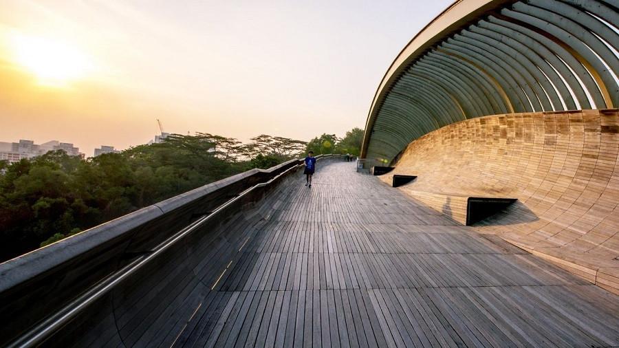 5 lý do bạn nên du lịch Singapore ngay trong mùa hè này - 8