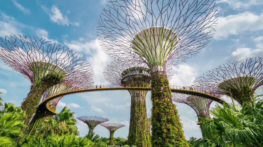 5 lý do bạn nên du lịch Singapore ngay trong mùa hè này - 7