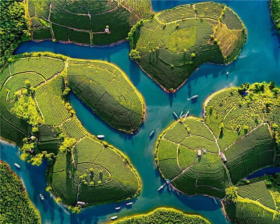 Gió Lào Eco Lodge - Homestay đẹp nhất đảo chè Thanh Chương - ảnh 1