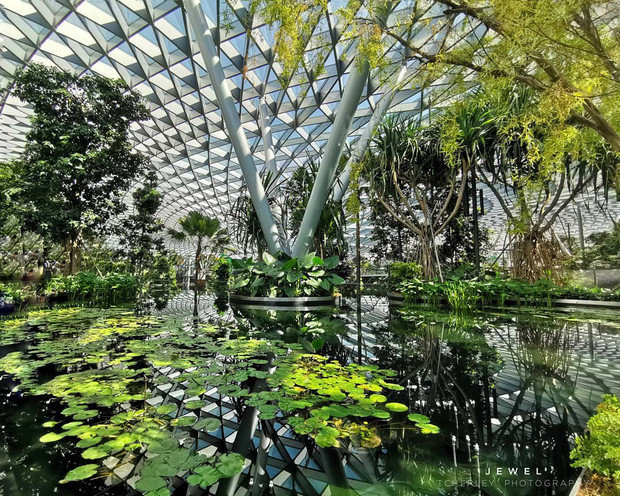 3 điểm đến tuyệt vời trong chuyến du lịch Singapore - Malaysia - ảnh 4