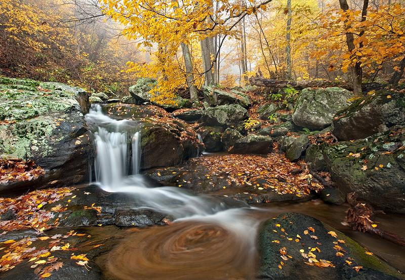 Du lịch Mỹ đi đâu để ngắm lá vàng, lá đỏ mùa thu? - ảnh 8