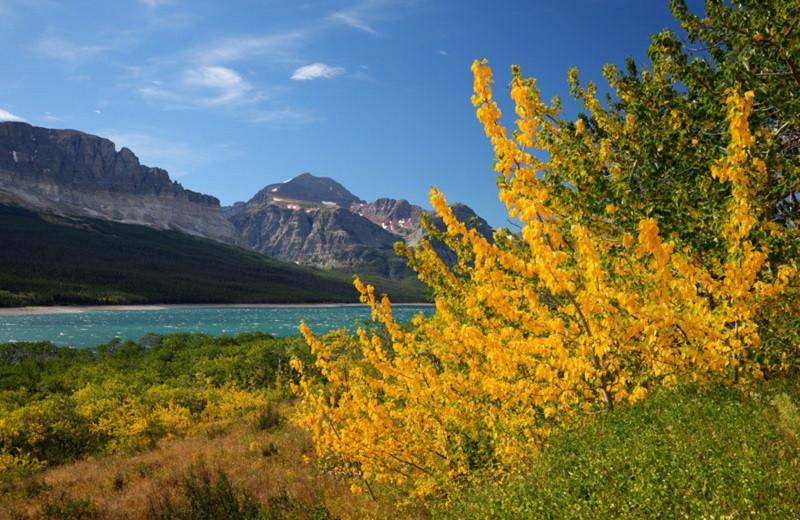 Du lịch Mỹ đi đâu để ngắm lá vàng, lá đỏ mùa thu? - ảnh 1