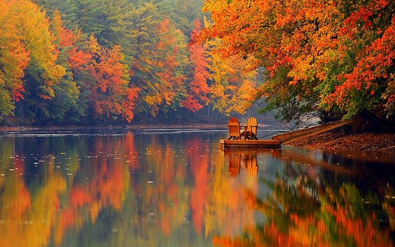 Du lịch Mỹ đi đâu để ngắm lá vàng, lá đỏ mùa thu? - ảnh 4