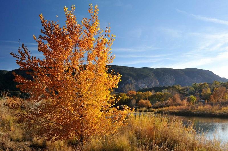 Du lịch Mỹ đi đâu để ngắm lá vàng, lá đỏ mùa thu? - ảnh 10