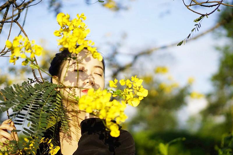 Tháng 10, du lịch Gia Lai thỏa sức check-in cùng sắc hoa muồng vàng rực rỡ - ảnh 1