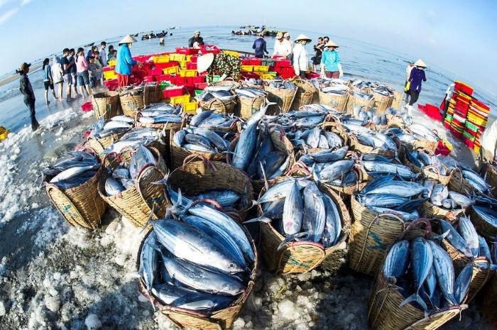 Du lịch Long Hải có gì hấp dẫn? - Làng chài Long Hải