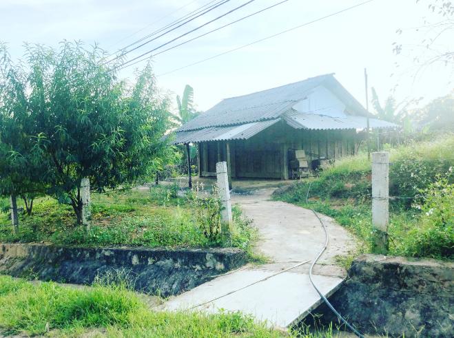 Na Ngoi - Nơi ngự trị của đỉnh Phu Xai Lai Leng hùng vĩ tỉnh Nghệ An - ảnh 6