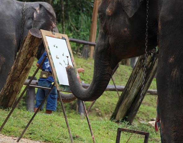 Lang thang Chiang Mai cuốn hút quên lối về - ảnh 3