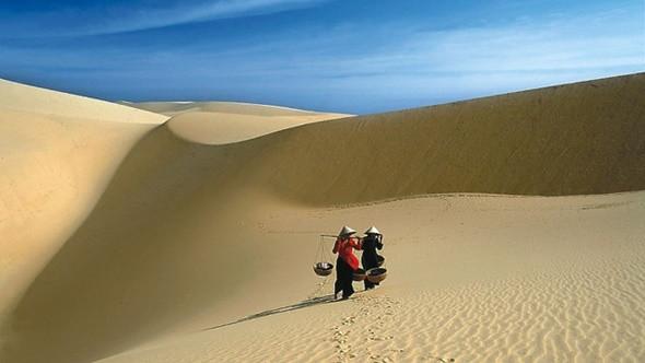 Săn lùng tour Tết giá rẻ cùng Đất Việt Tour - Đồi cát bay