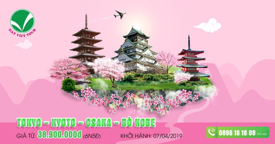 Khuyến mãi cực hấp dẫn cho tour ngắm hoa anh đào - Tour Tokyo | Bò Kobe