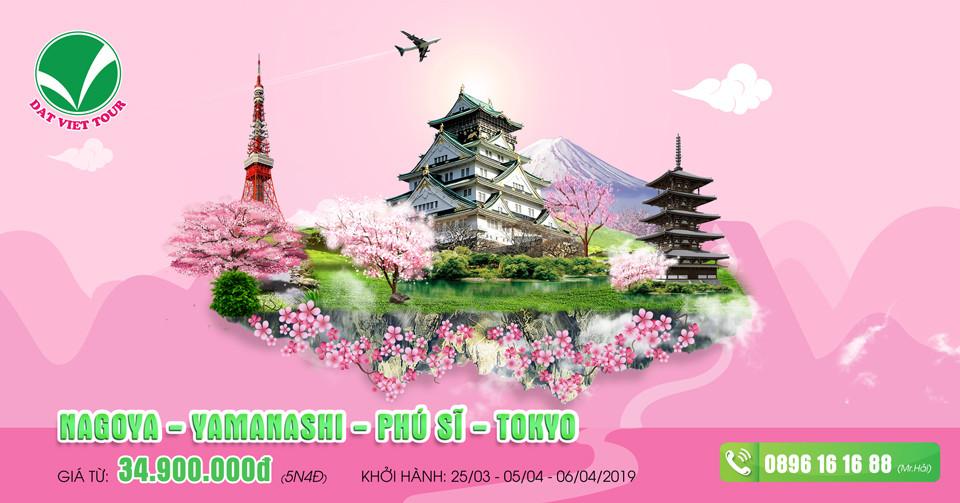 Khuyến mãi cực hấp dẫn cho tour ngắm hoa anh đào - Tour Phú Sĩ | Tokyo