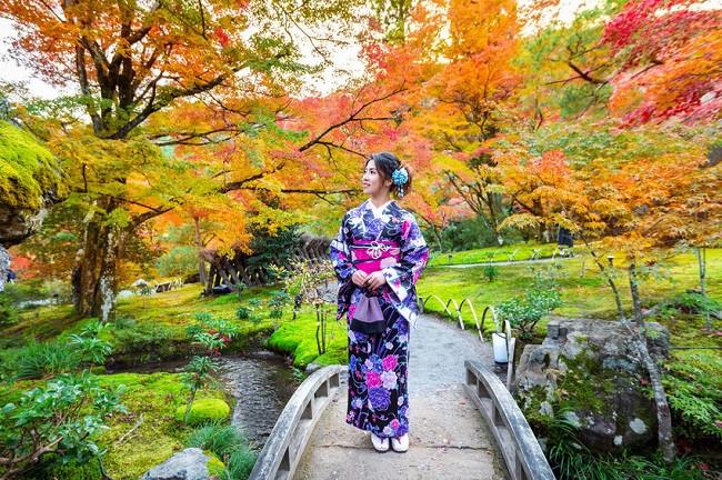 Điểm mặt 5 lý do rớt visa du lịch Nhật Bản rất nhiều người mắc phải - ảnh 1