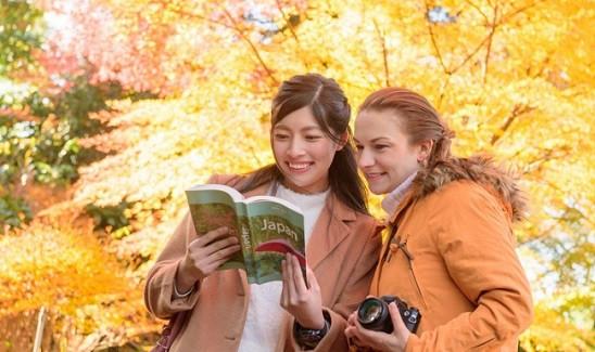 Điểm mặt 5 lý do rớt visa du lịch Nhật Bản rất nhiều người mắc phải - ảnh 5