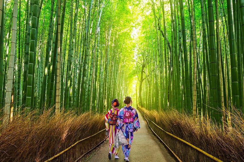Xin visa du lịch Nhật Bản gồm những thủ tục nào? - ảnh 2